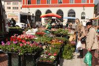 Marktstand auf dem Schrannenplatz