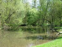 Der Stadtpark im Frühling