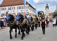Pferdegespann des Erdinger Weissbräus
